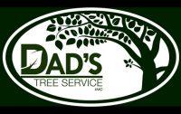 dads-tree-service.jpg